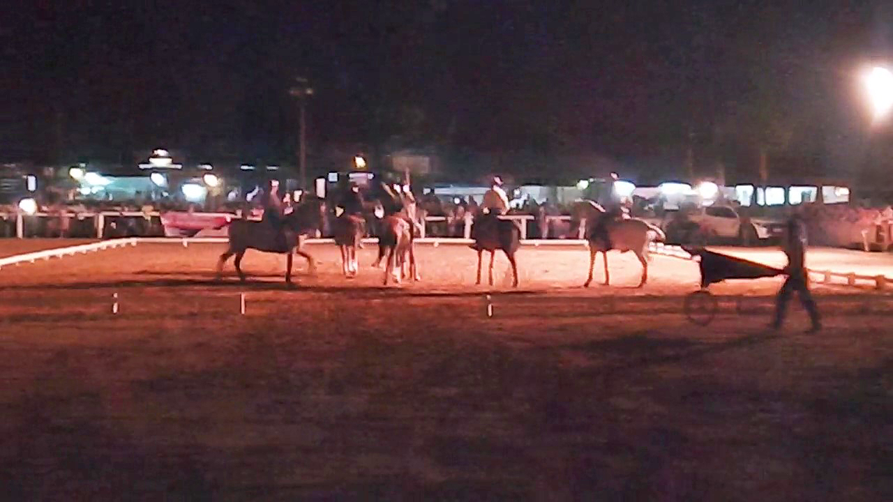 traditional riding and display of Lusitano horses at Confest, Estoi, Algarve, Portugal